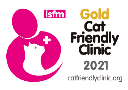 cat friendly clinic gold level